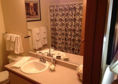 country loft bathroom